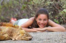 Urlaub auf den Galapagosinseln: Tauchen vor Südamerika