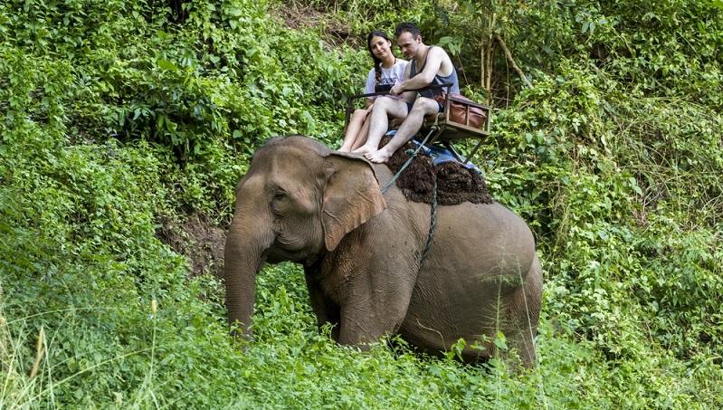 Sind die Ausflüge und Tagestouren noch nicht in der Pauschalreise nach Khao Lak mit inbegriffen, müssen diese separat gebucht oder selbst organisiert werden.