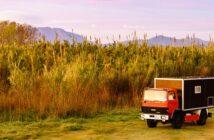 Welches Auto für die Weltreise? 5 Beispiele und 11 Tipps von erfahrenen Globetrottern (Foto: Shutterstock-Anetlanda )
